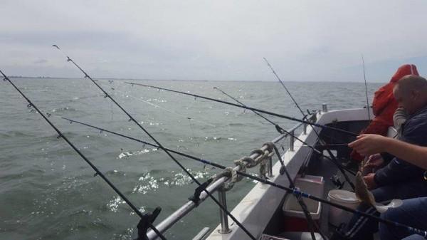 De Zeearend, vissen op Schol in Frankrijk