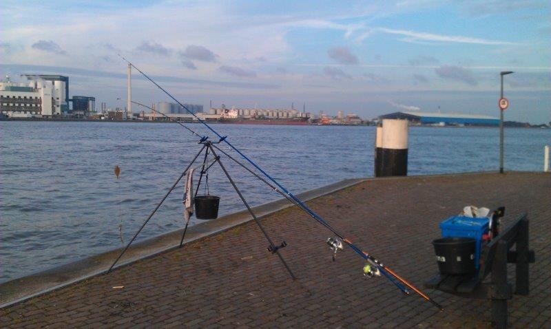 Reinier, vissen aan Vlaardingen/MV2