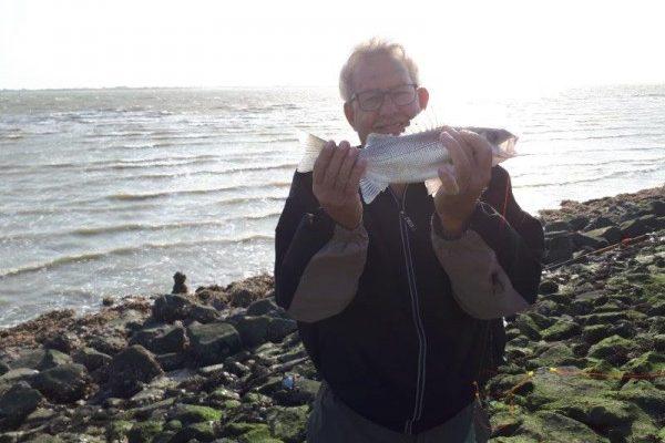 Nico, vissen op Zeebaars