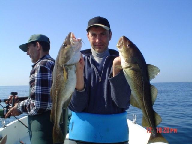 Kabeljauw vissen in Langeland