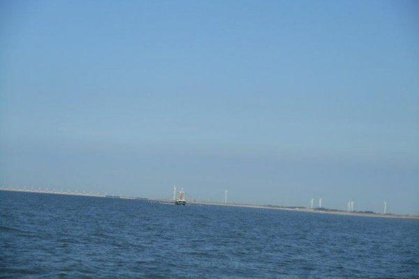 Dieptepunt, tong vangst Voor-delta?
