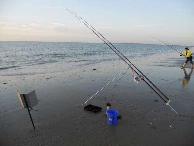 Op zeebaars vissen aan Neeltje jans