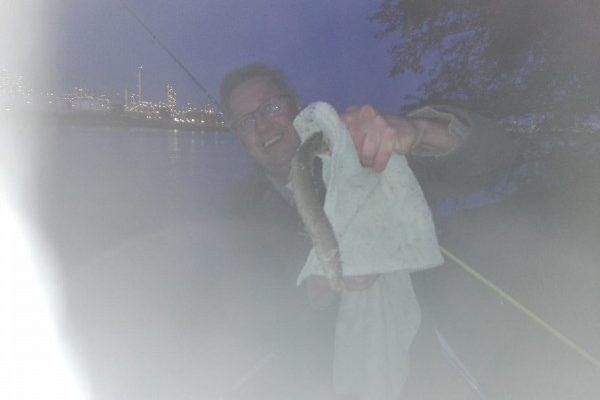 Ron Tak, vissen op tong