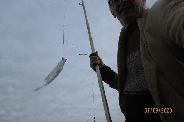 Henk en Theo, vissen op Tong