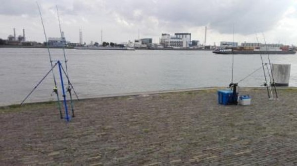 Robin en Dirk, vissen aan Vlaardingen