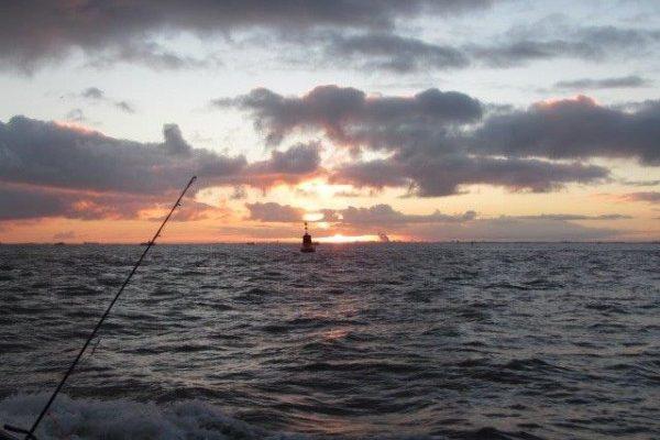 Clan Tulleneers, vissen op de Westerschelde
