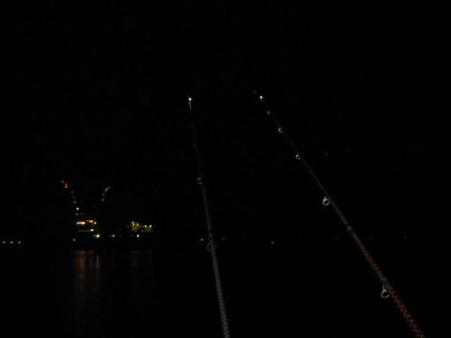 Vissen Waterweg Europoort