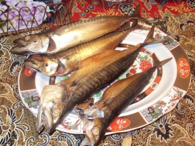 Makrelen met Westlandse Willem