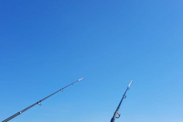 Eldert, vissen aan de Waterweg